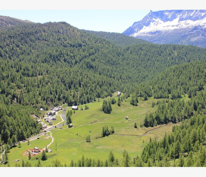 alpe devero summer climb camp guide alpine proup (1)