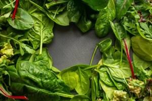 Verdura come fonte proteica