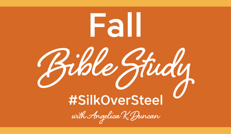 silk over steel prayer bible study