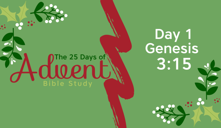 25 Days of Advent Bible Study Series {Day 1}