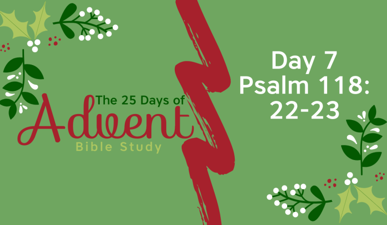 25 Days of Advent Bible Study Series {Day 7}
