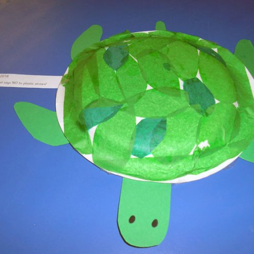 k-world-turtle-day-may-2018 (3)