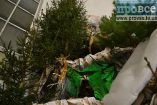 largest Christmas shopka Ternopil_0016_новый размер