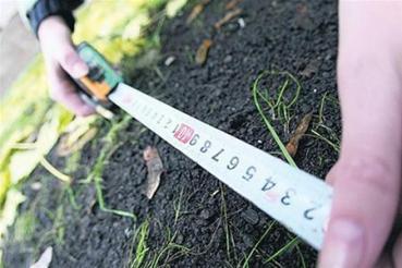 В Україні продовжили земельне кріпацтво ще на рік