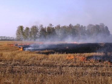 Під час спалювання стерні на Тернопільщині загинуло двоє людей