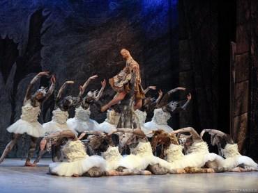 """6 лютого у Тернополі покажуть балетну постановку Раду Поклітару """"Лускунчик"""""""