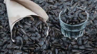 Водій із села Бариш викрав на 30 тисяч гривень насіння соняшника