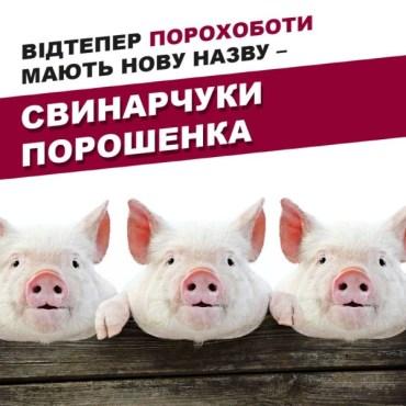 Продовжуємо переконуватися, що порошенківці, які керують Тернопільською областю, мають великі кишені в штанах та маленькі звивини в голові