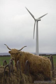 Wind turbine with livestock