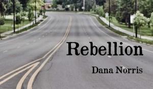 Rebellion, by Dana Norris