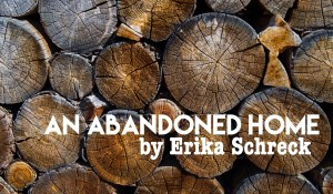 An Abandoned Home, by Erika Schreck