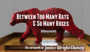Between Too Many Rats and So Many Roses