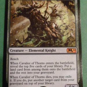 Cavalier of Thorns Holo black core