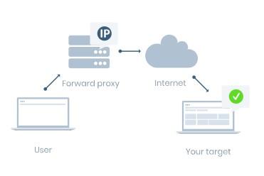 proxy ip address