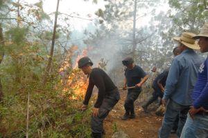 Fuego consume más de 300 hectáreas en región de San Andrés Tenejapan