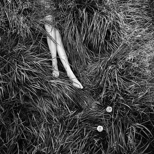 """""""La hierba"""" - MG Abadía - 110814"""