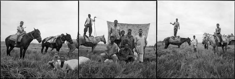 """Recogida del arroz - Las Guaranas, Rep. Dominicana"" - Juan Manuel Díaz Burgos - 140915"
