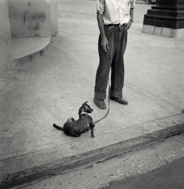 """""""La Habana 2003"""" - Juan Manuel Castro Prieto - 070615"""