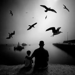"""""""The life"""" - Miguel Cabezas - 140515"""