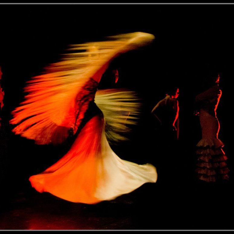 flamencoAdultosA