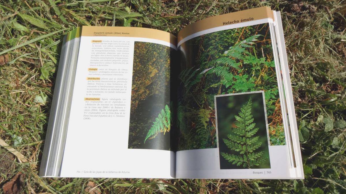Guía-de-las-joyas-de-la-botánica-de-Asturias-1