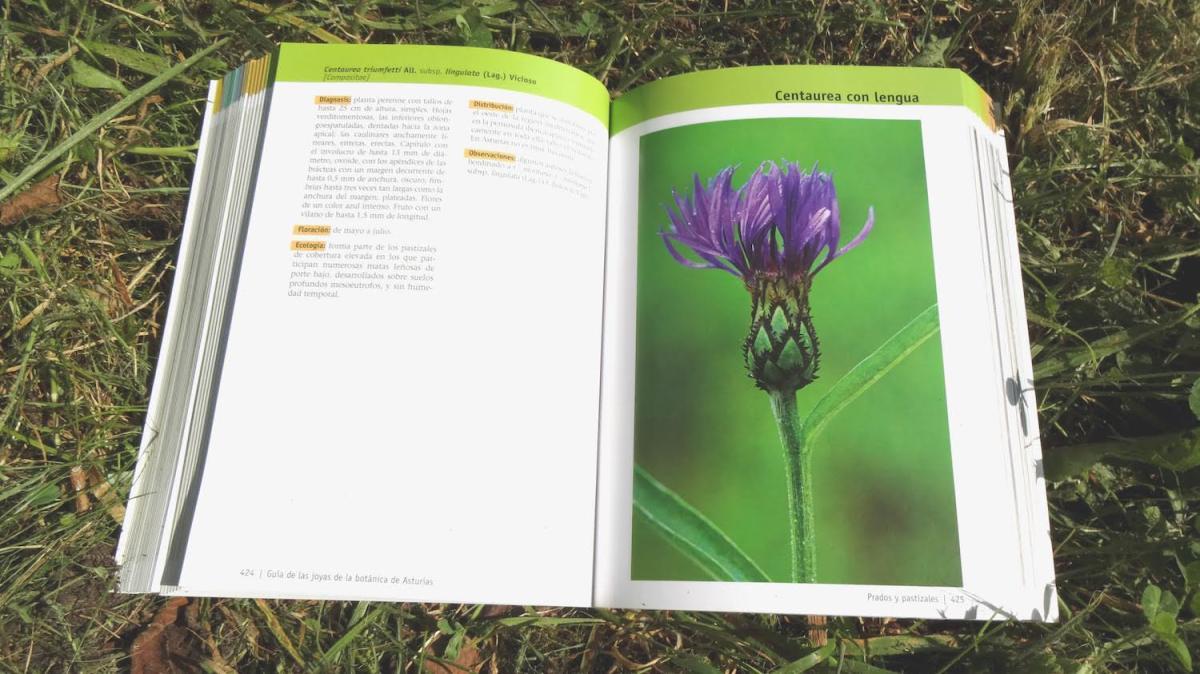 Guía-de-las-joyas-de-la-botánica-de-Asturias-6