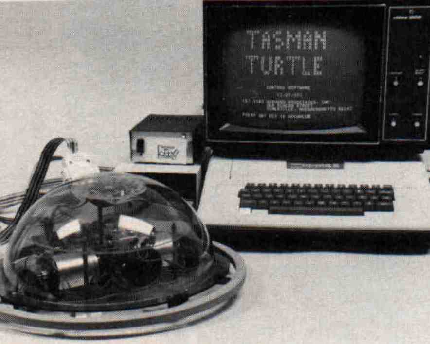 https://i1.wp.com/proyectoidis.org/wp-content/uploads/1968/03/turtle_with_apple.jpg?resize=884%2C708