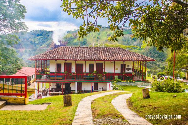 La Finca El Ocaso, producción de café sustentable y ecológica.
