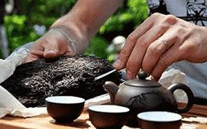 Завариваем чай пуэр
