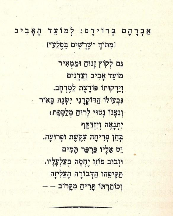 Aviv song-10002