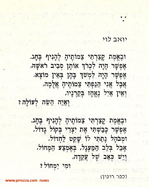 Children in kibbutz-4