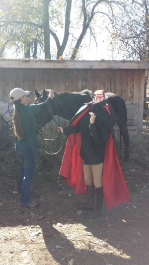 headless horseman halloween 2015 (450x800)