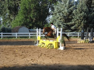 Billy, Four Winds Equestrian Center show.