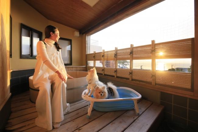 愛犬との西伊豆旅をお愉しみください