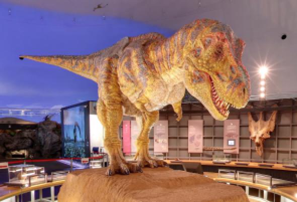 世界三大恐竜博物館の1つ福井県立恐竜博物館にて開催