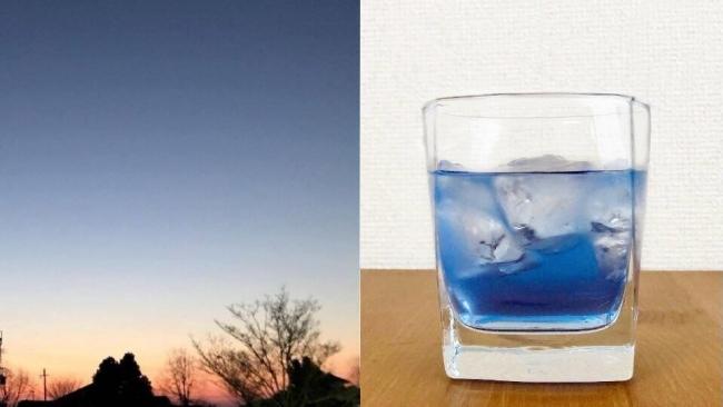バタフライピーの漬け込み方で、  青色の濃淡も変化します。