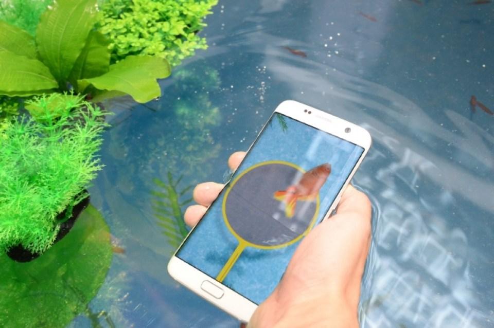 <デジタル金魚すくい> Galaxy S7 edgeの防水機能を体験
