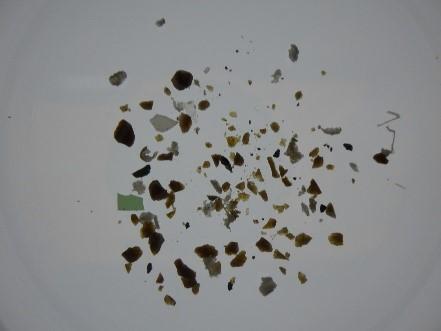 ▲回収したマイクロプラスチック