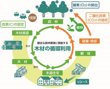 木材の循環利用について