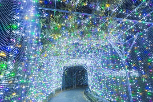 約100メートル続く光のトンネルは、カラフル に煌めく光と音のファンタジーロード。