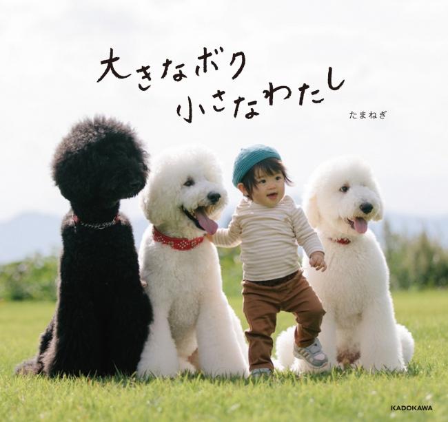 『大きなボク 小さなわたし』(発行:KADOKAWA)