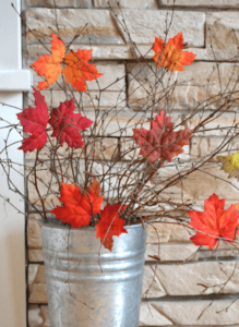 maple leaf bucket