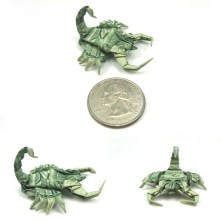 New_pics__Dollar_Scorpion_by_orudorumagi11