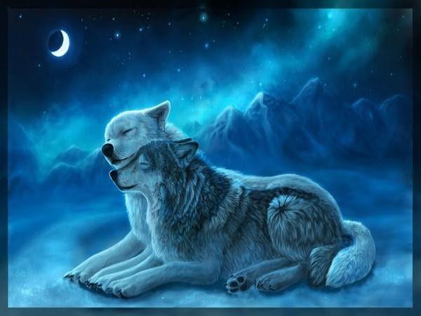 Drawings Magic Wolves