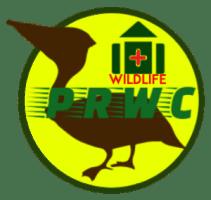 After Hours Wildlife Emergencies