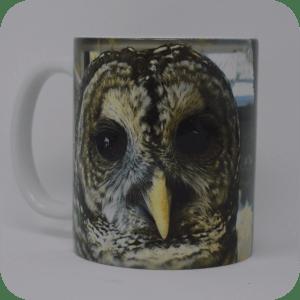Ambassador Orion Coffee Mugs