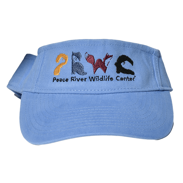 Sun Visor with Embroidered Logo Blue
