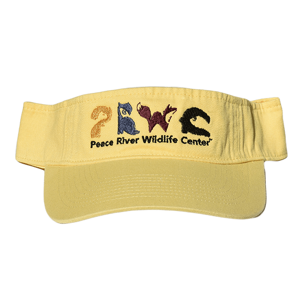 Sun Visor with Embroidered Logo Yellow