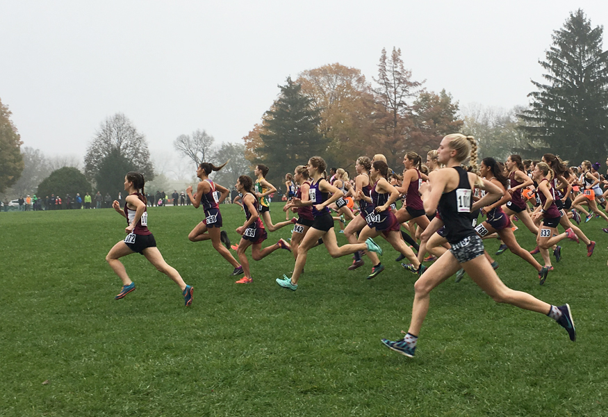 Chelsea+Gale+%28farthest+to+the+left%29+pulls+ahead+at+the+start+of+the+girls+class+2A+state+cross+country+race+November+4+in+Peoria%2C+Illinois.