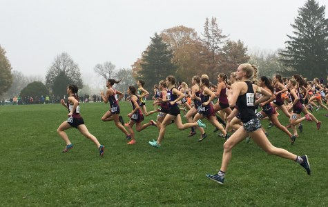 Chelsea Gale Finishes 10th at State